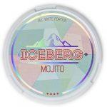 iceberg-mojito