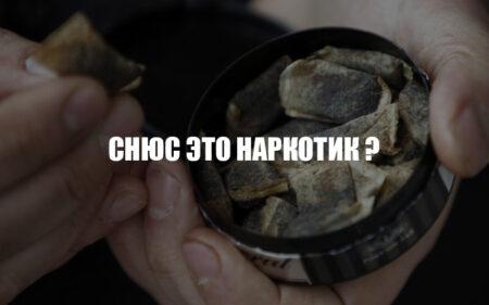 Снюс — это наркотик? логотип